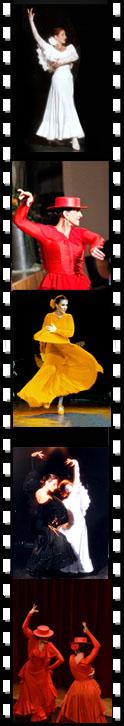 Impressionen De kuenstler exklusiv tanz komposition choreographie und konzerte